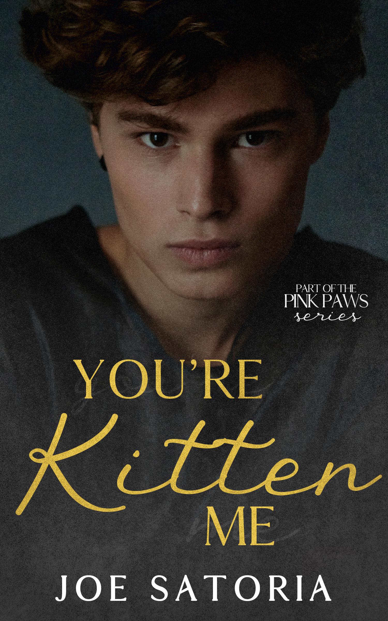 3 - You're Kitten Me copy